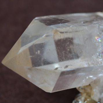 goldenhealer gem 112g